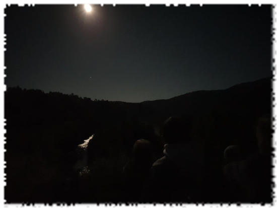 2019-09-19-gmnf-affut-faune-nuit-lune